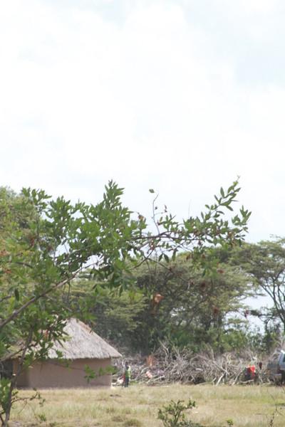 Kenya Part1 '15 2700.JPG