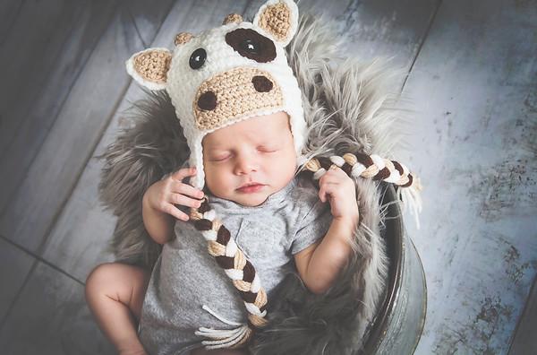 Mason Horak Newborn 2017