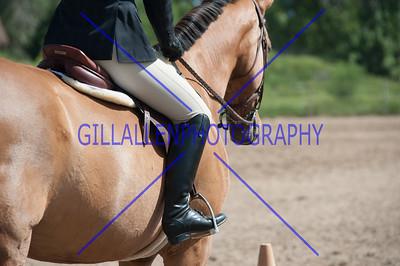Colorado Stock Horse Assoc. June 15th 2014
