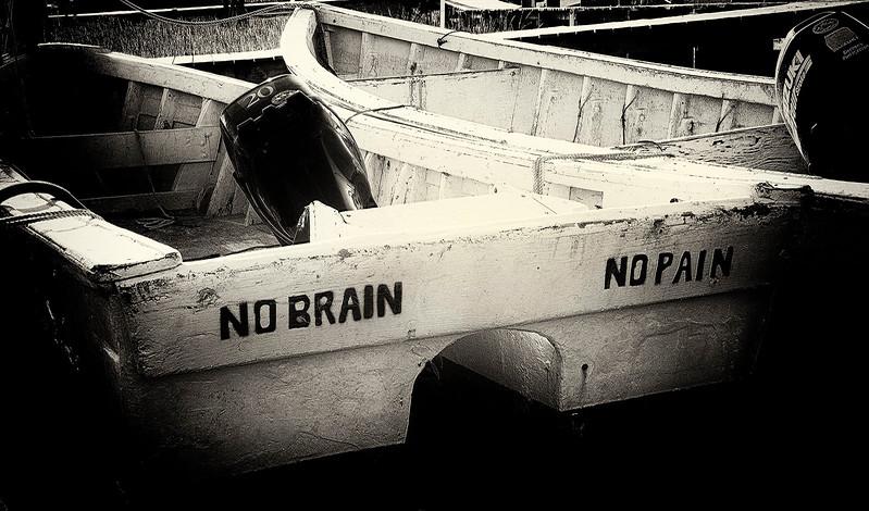 No Brain, No Pain