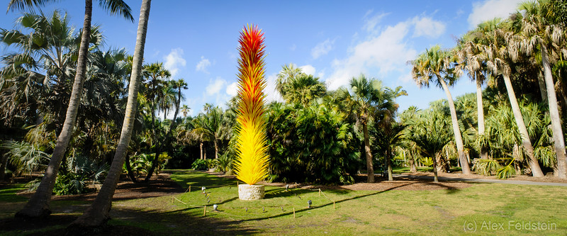 Fairchild - Chihuly Exhibit