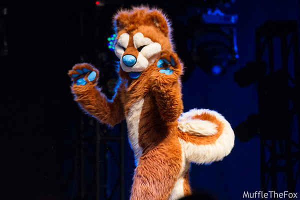 MFF 2016 Dance Competition