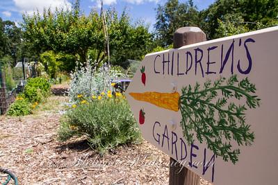 Sonoma Garden Tour