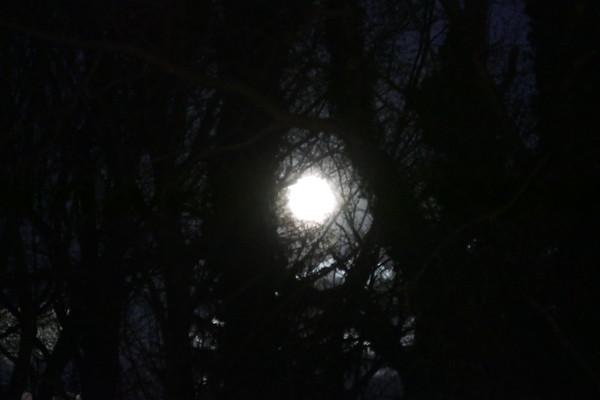 Jan 2018 - Super Moon
