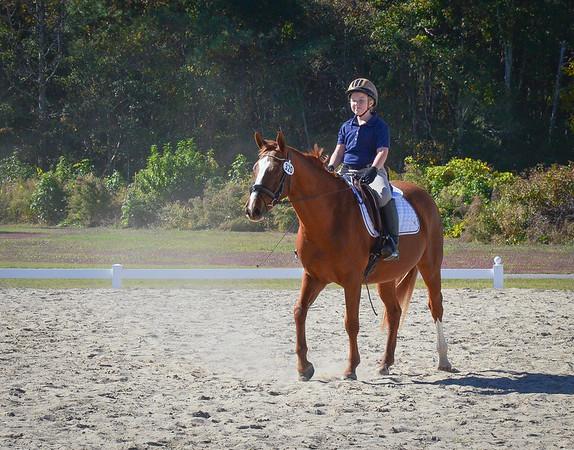 NC Horse Show Fall 2014