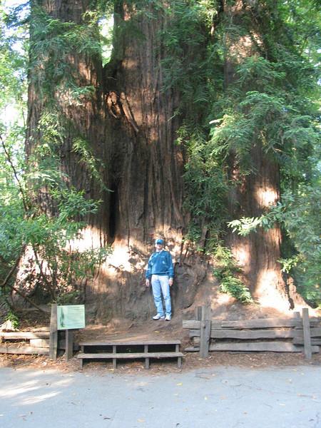 2003-06 Training in Santa Clara