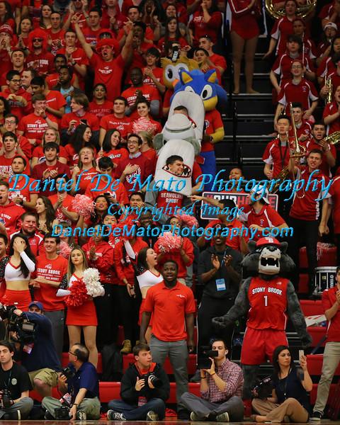 Stony Brook University American East Championship Crowd Shots