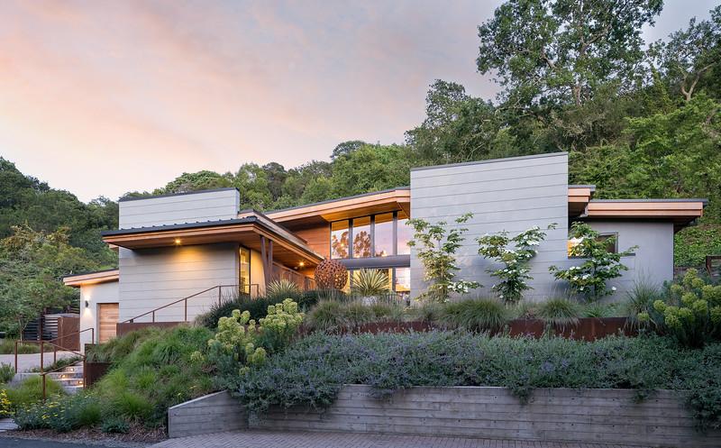 Orinda Modern Landscape
