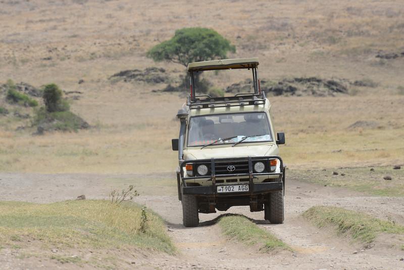 East Africa Safari 441.jpg