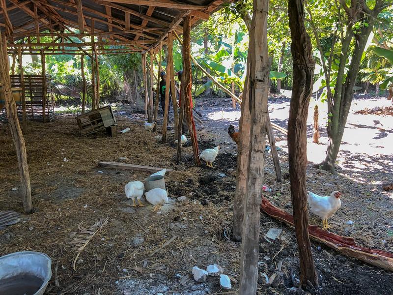 iPhone_Haiti--29.jpg