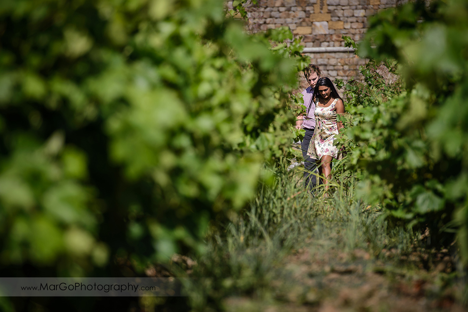 man in pink shirt and Indian woman in flower dress walking in the vineyard in front of the castle during engagement session at Castello di Amorosa in Calistoga