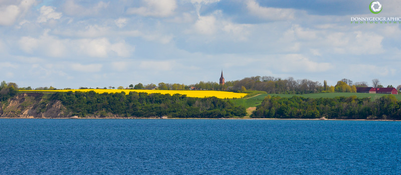Canola fields,church tower & farm.jpg