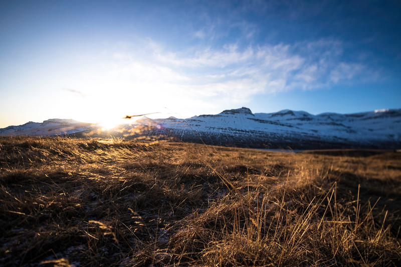 ICELAND-2-4.jpg