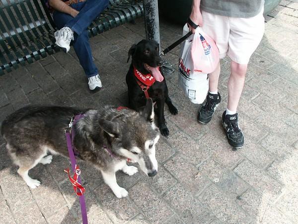 AIDS Walk Austin 2004