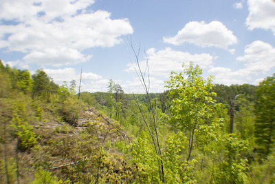 2013_0512 Red River Gorge