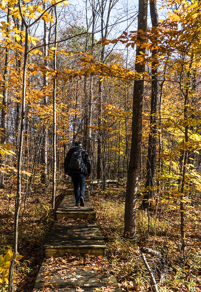 Hiker at the Nan Weston Preserve