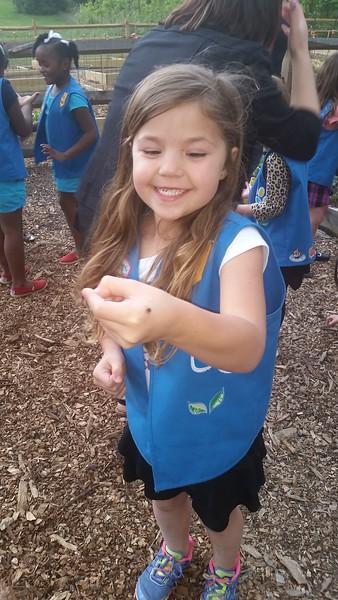 Ladybugs & Daisy Scouts