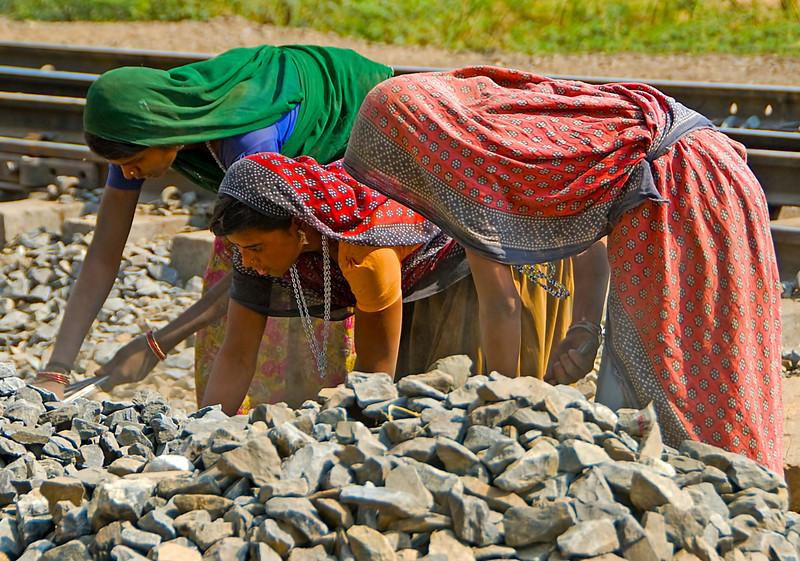 INDIA2010-0213A-60A.jpg