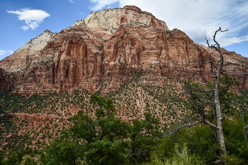 2019 Grand Canyon-101.jpg