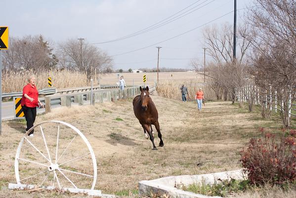 Happy Acres Ranch 2012