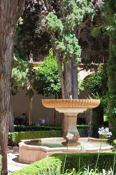 alhambra-107.jpg
