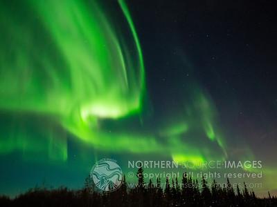2012-11-01 Aurora Halloween