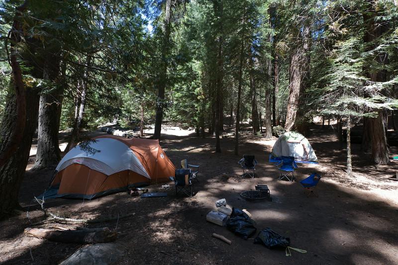 Sequoia_0137.jpg