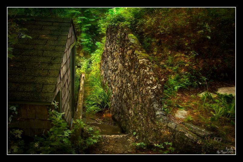 """""""Hogwart Steps"""""""