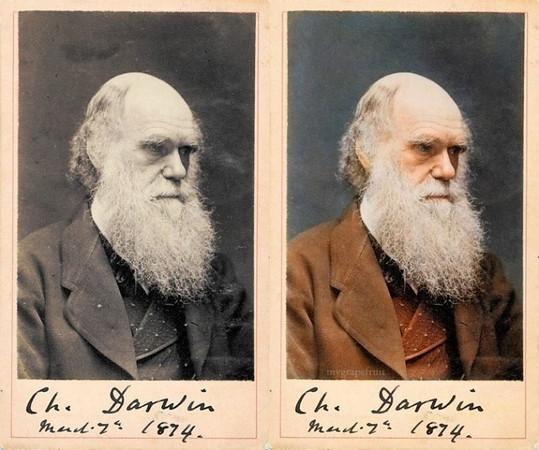 Charles Darwin, 1874 (Photo credit: Sanna Dullaway)
