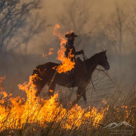 Prairie Burn - Clover Cliff Ranch