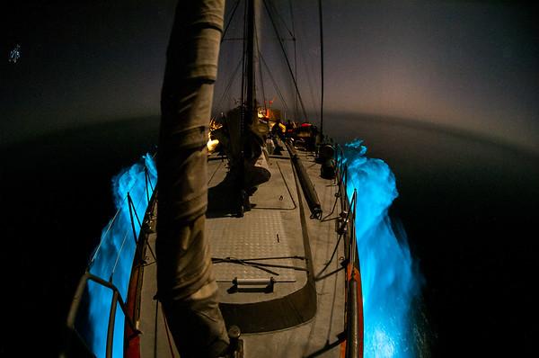 Tara Oceans - 2010 - Indian Ocean
