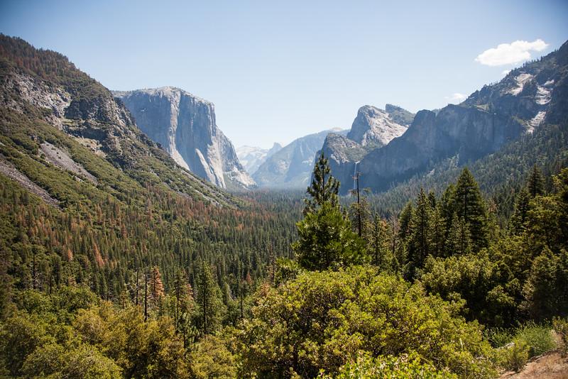Yosemite_2016_Park-1.jpg