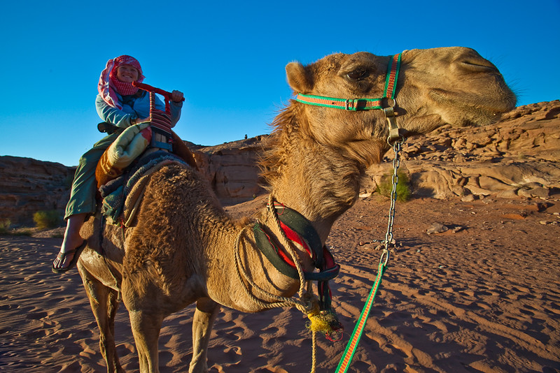 camel ride things to do in jordan.jpg