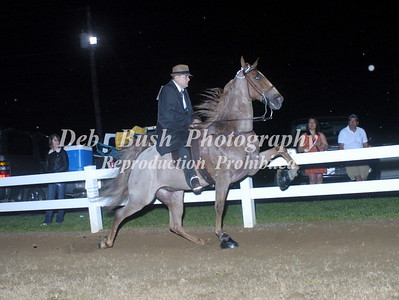 CLASS 29  AMATEUR OWNED & TRAINED SPECIALTY
