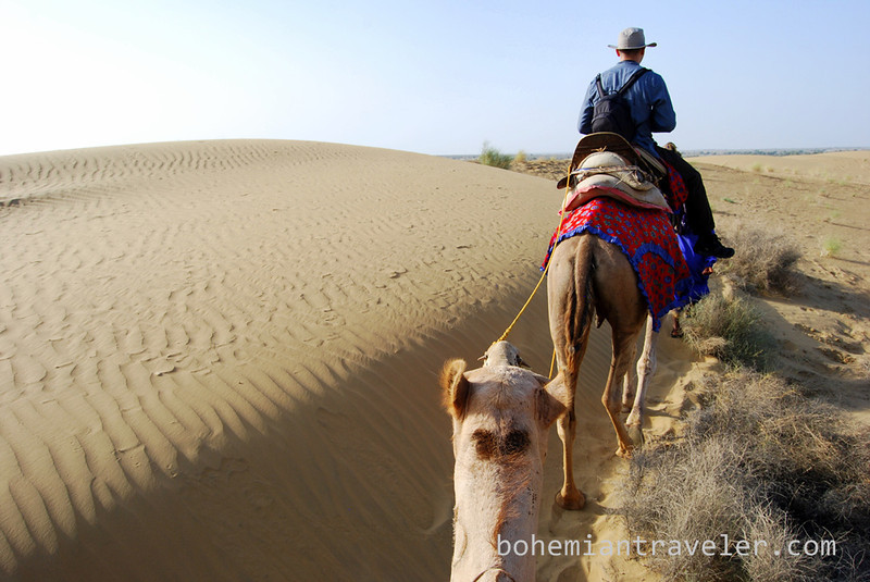 Thar desert camel train.jpg