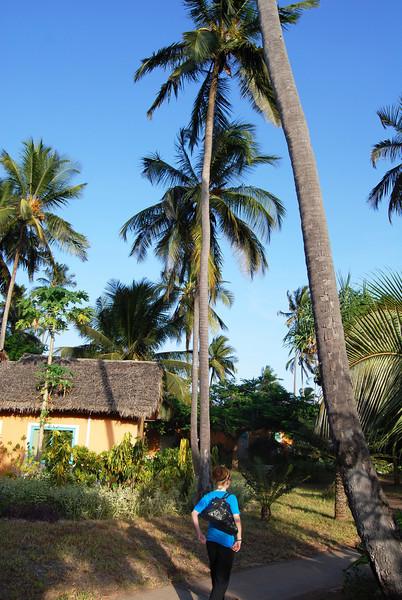 Zanzibar (16).JPG