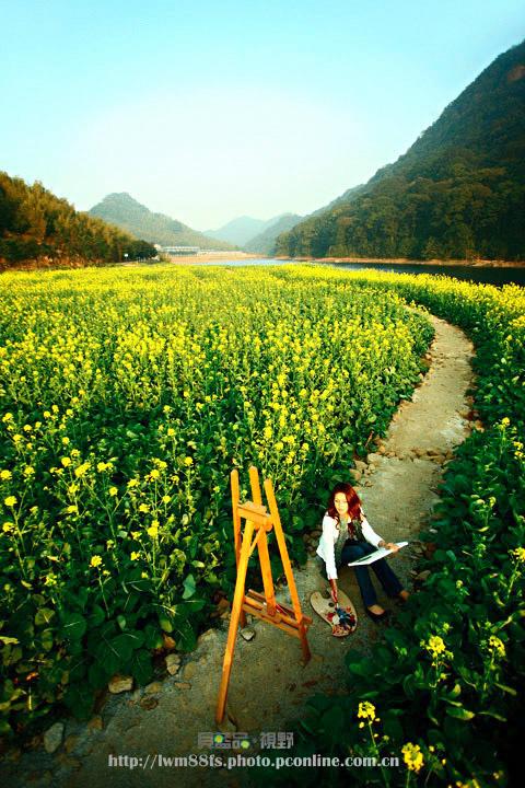 八一八我所关注过的摄影师 - 一镜收江南 - 清韵