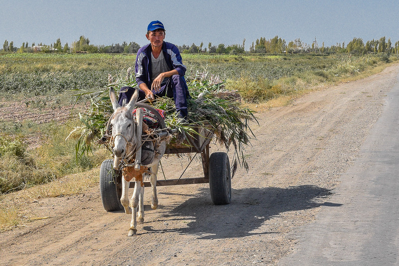 Usbekistan  (277 of 949).JPG