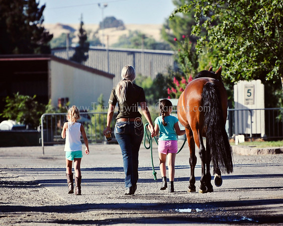 Golden State Dressage Warm Up Cool Down  July 28-30,2017