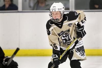 Noah & Adam Hockey 2-15-15