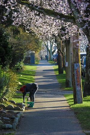 early spring in Van