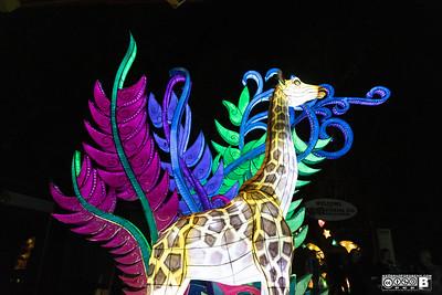 2020 Asian Latern Festival