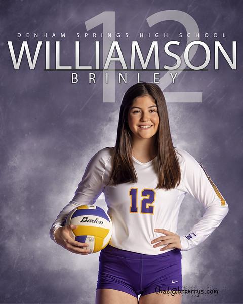 Williamson Banner 1.jpg