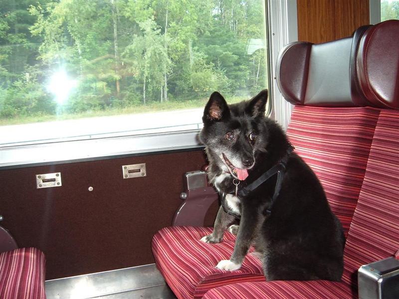 Coach seats are more comfortable.  August 2012   Saranac  Lake, NY