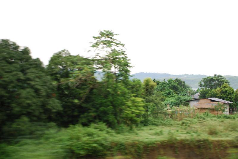 Pictures 08 10-07-08 thru 11-14-08 043.JPG