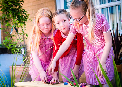 Chaloner open garden & parents day