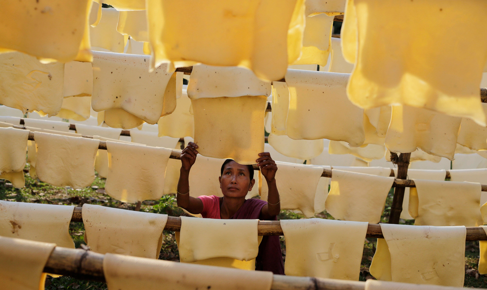 Description of . Daily wage laborer Jina Boro, 35, hangs rubber sheets to dry at a rubber farm in Hatikhuli village, about 35 kilometers (22 miles) east of Gauhati, India, Friday, March 7, 2014. International Women's Day will be marked on March 8. (AP Photo/Anupam Nath)