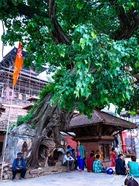 Kathmandu__DSC4730-Juno Kim.jpg