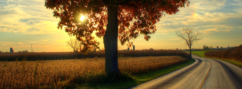 autumn - amishtown road tree FB Banner.jpg