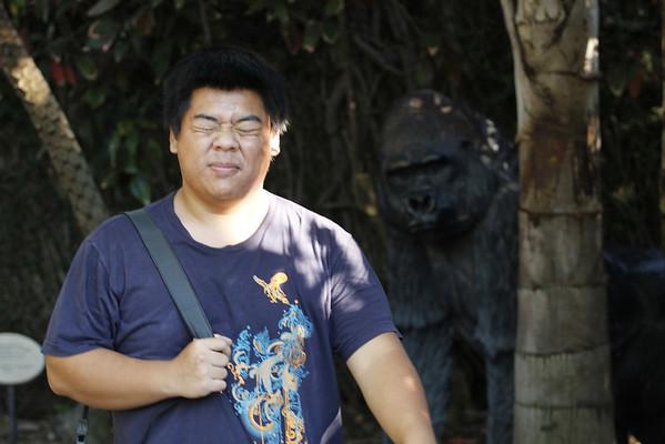 San Diego Zoo 8/20/2013